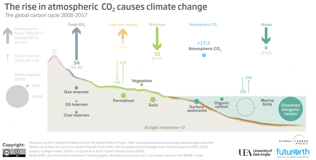 graphic showing movement of carbon around the carbon cycle