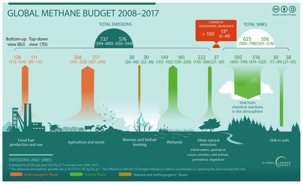 figure showing global methane budget